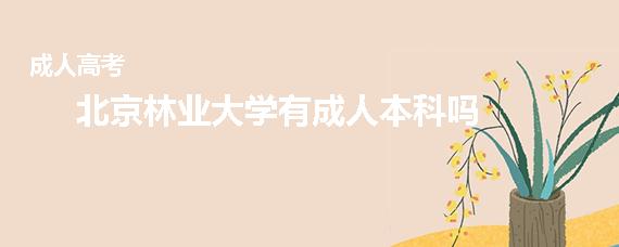 北京林业大学有成人本科吗
